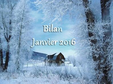Bilan janvier2